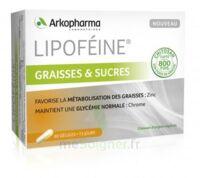 Lipofeine Graisse et Sucres Gélules B/60 à ANNECY