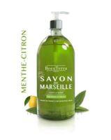 Beauterra - Savon de Marseille liquide - Menthe/Citron 1L à ANNECY