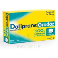 DOLIPRANEORODOZ 500 mg, comprimé orodispersible à ANNECY