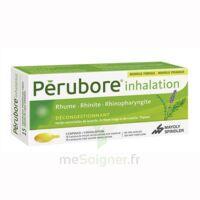 PERUBORE Caps inhalation par vapeur inhalation Plq/15 à ANNECY