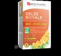 Forte Pharma Gelée royale bio 2000 mg Solution buvable 20 Ampoules/15ml à ANNECY
