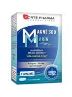 Magné 300 Marin (2 mois) à ANNECY