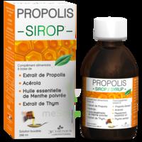 3 CHENES PROPOLIS Sirop Fl/200ml à ANNECY