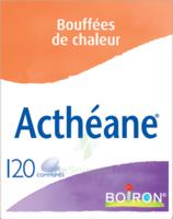 Boiron Acthéane Comprimés B/120 à ANNECY